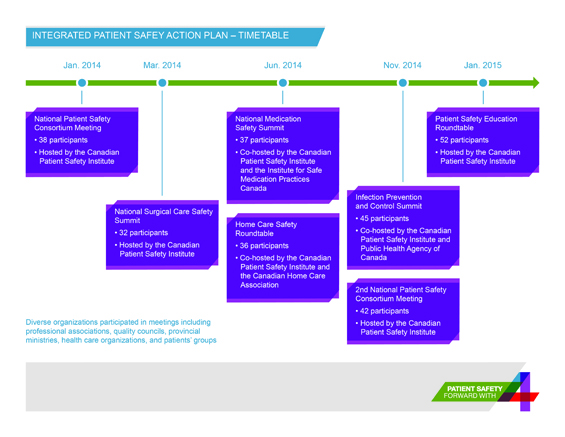 Integrated Patient Safety Action Plan - Timetable.jpg