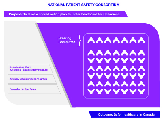 NationalPatientSafetyConsortium-diagram.jpg