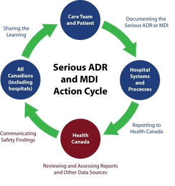 Visual of Serious ADR and MDI Action Cycle - Care Team and Patient, Hospital Systems and Processes, Health Canada, All Canadians (including hospitals)