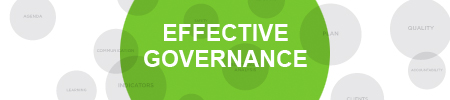 Executing Effective Governance for Quality and Patient Safety